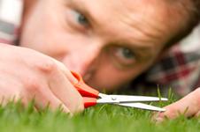 perfectionist-grass
